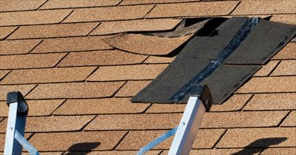 Roof Damage and Repair